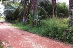 128. Tanah Desa Tangkit Kumpe Ulu (1)