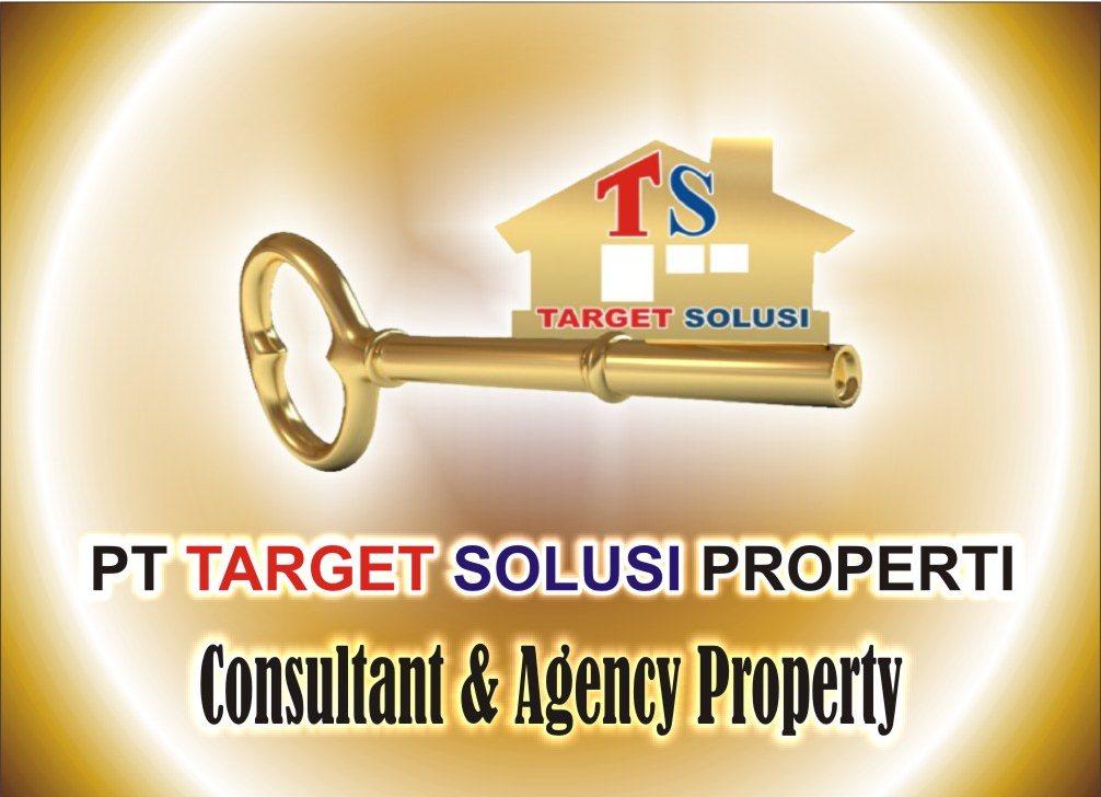 logo ts new1