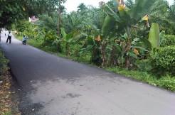 120. Tanah 54 Tumbuk lRG SISWA-Irwan Awang (2)