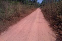 223. Tanah Sungai Gelam, 2,6 H - Irwan Awang (4)