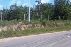 224. Tanah Sungai Gelam, Muaro Jambi, 2,5 M- Irwan Awang (4)