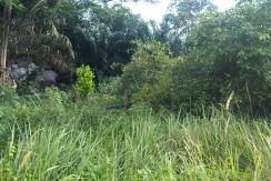 F B1- Tanah Kebun Bohok-Irwan Awang (2)