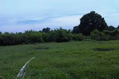F B1- Tanah Raden Patah Kasang-Irwan Awang (5)