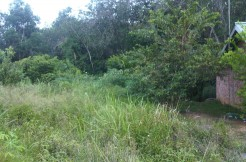 Tanah Jl. Hutan Kota, Mayang Mangurai-Irwan Awang (5)